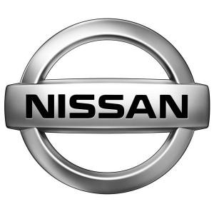 nissan-motors-customer-artha-kirana-flycatcher-pest-control
