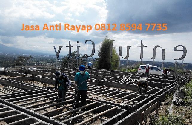 Jasa Anti Rayap Murah di Tangerang