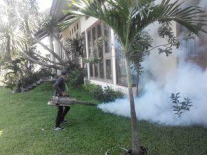 jasa-fogging-nyamuk-dbd-murah-tuntas-di-tangerang